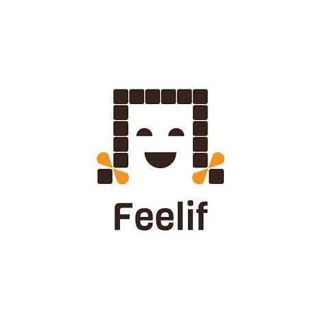 Feelif 盲用智慧型學習平版